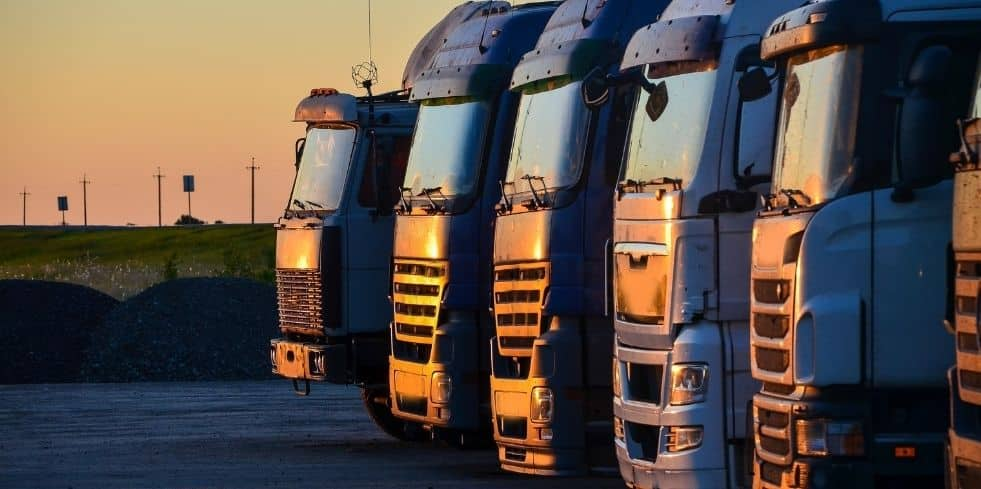 Management de transition dans le transport